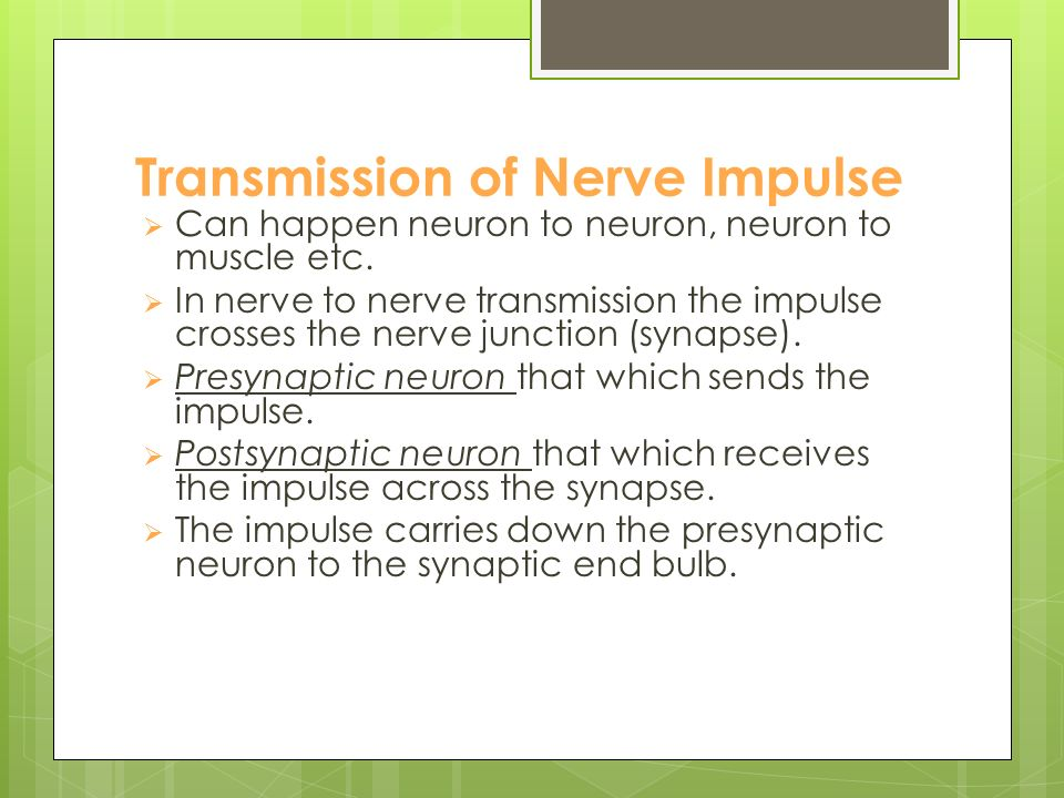 Action Potential and the conduction of nerve impulse  The wave of ionic reversals create the action potential which conducts the nerve impulse along the neuron.