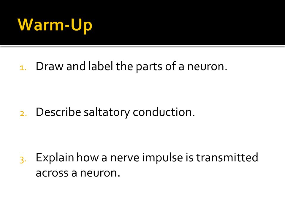 1. Draw and label the parts of a neuron. 2. Describe saltatory conduction.