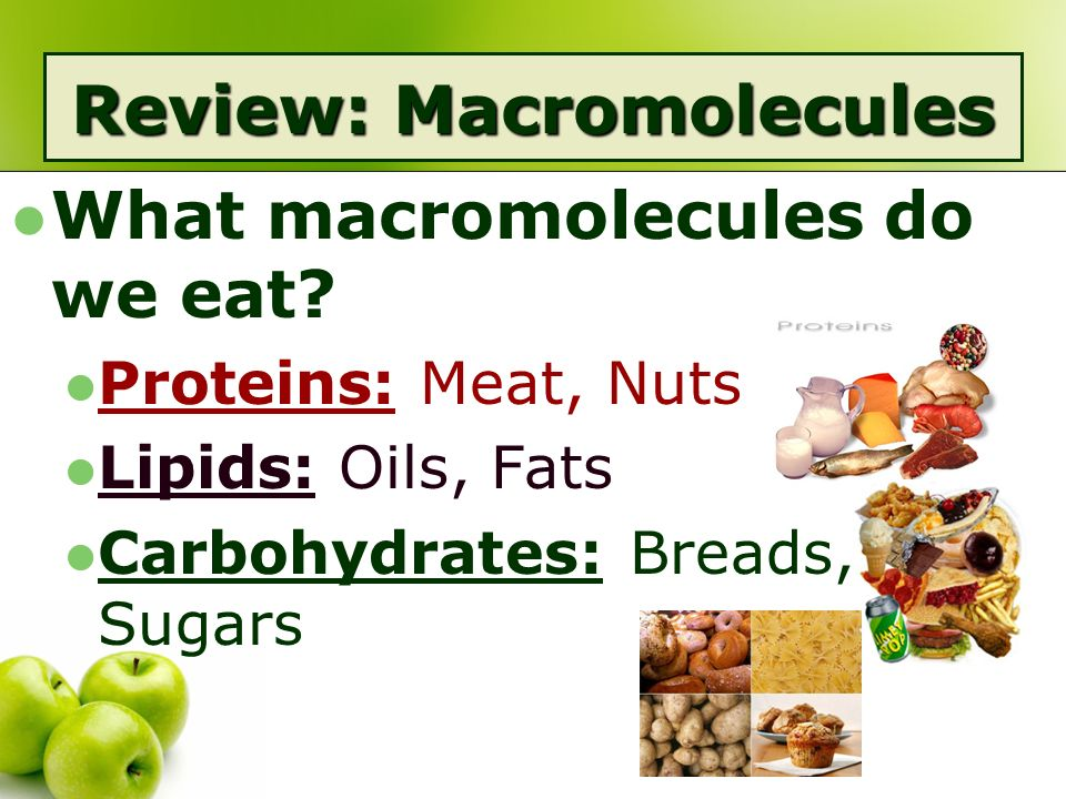 food macromolecules The four types of macromolecules are nucleic acids, proteins, carbohydrates and lipids these macromolecules are large molecules that make up.