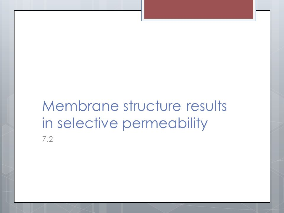 Membrane structure results in selective permeability 7.2