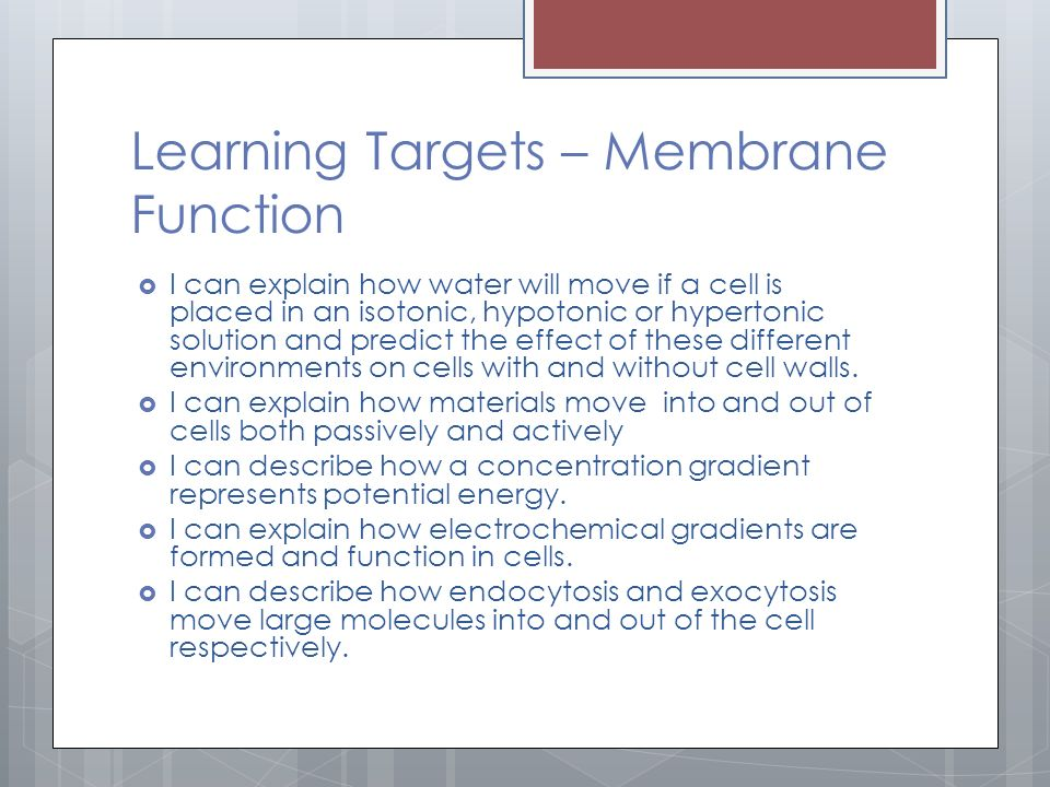 Learning Targets – Membrane Function  I can explain how water will move if a cell is placed in an isotonic, hypotonic or hypertonic solution and predict the effect of these different environments on cells with and without cell walls.