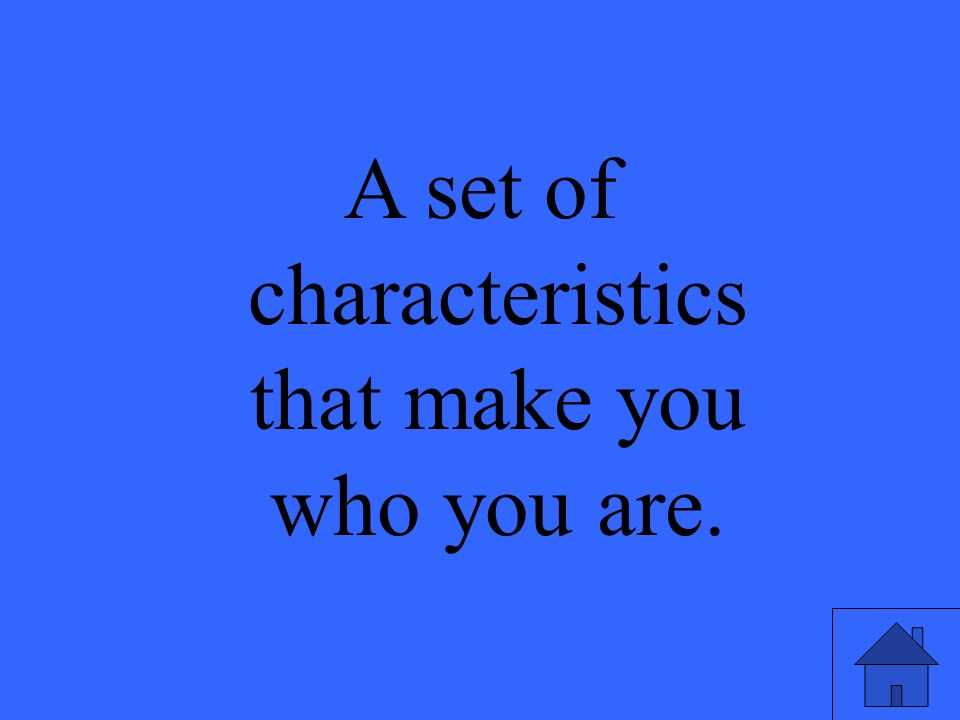 A set of characteristics that make you who you are.