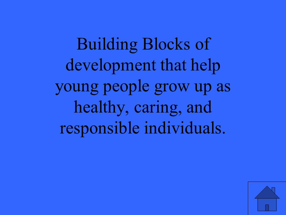 Building Blocks of development that help young people grow up as healthy, caring, and responsible individuals.