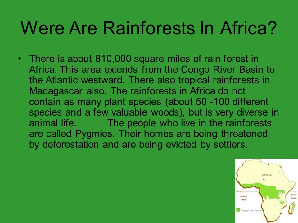 Were Are Rainforests In Africa. There is about 810,000 square miles of rain forest in Africa.
