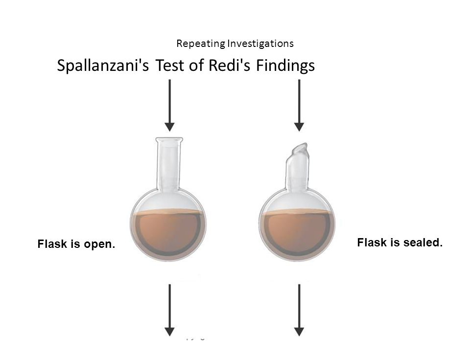 Repeating Investigations Spallanzani s Test of Redi s Findings Copyright Pearson Prentice Hall Flask is open.