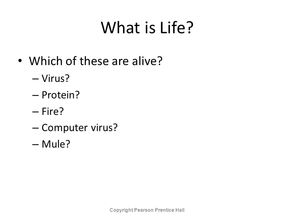 What is Life. Which of these are alive. – Virus.