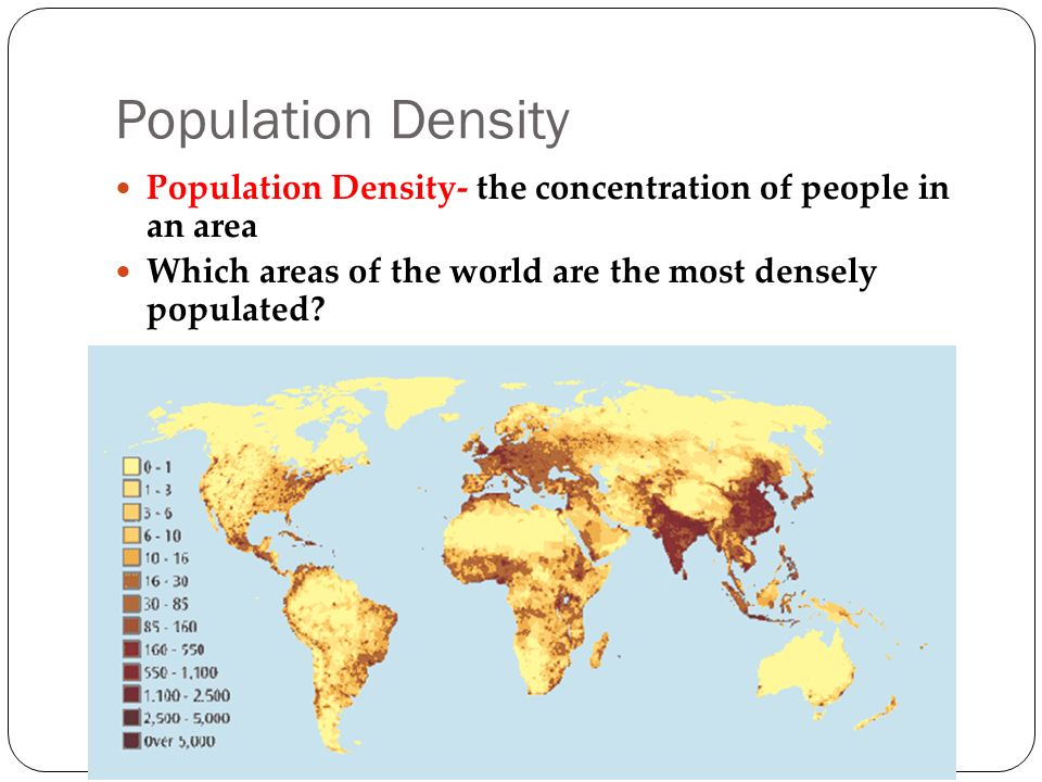 Population Density Population Density- the concentration of people in an area Which areas of the world are the most densely populated