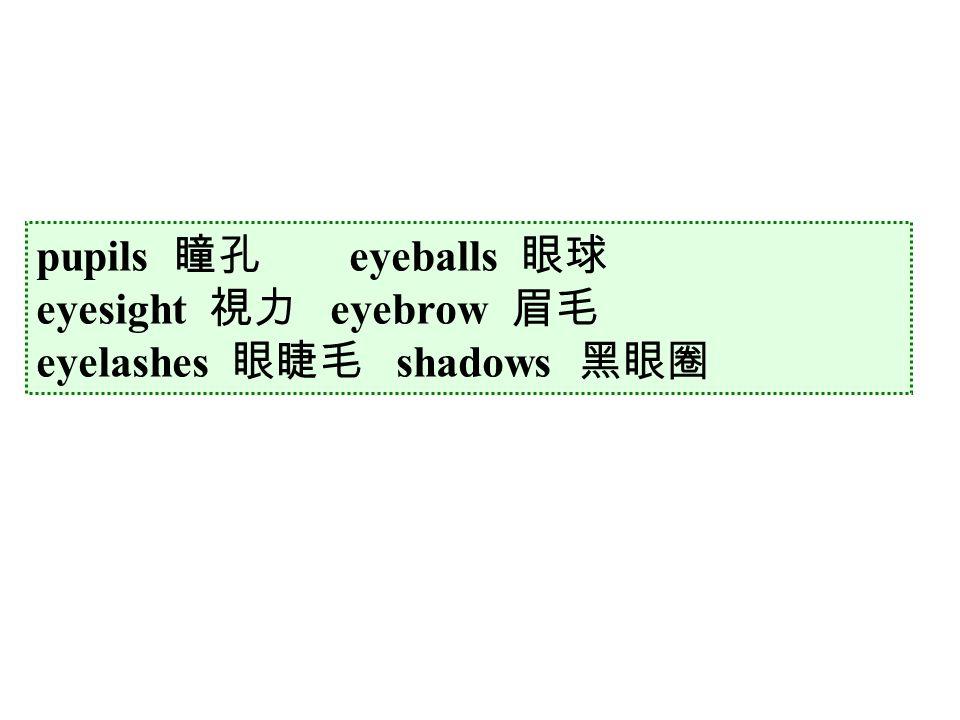 pupils 瞳孔 eyeballs 眼球 eyesight 視力 eyebrow 眉毛 eyelashes 眼睫毛 shadows 黑眼圈