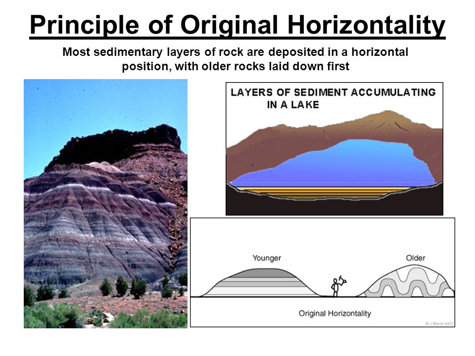 Principle of Original Horizontality Most sedimentary layers of rock are deposited in a horizontal position, with older rocks laid down first