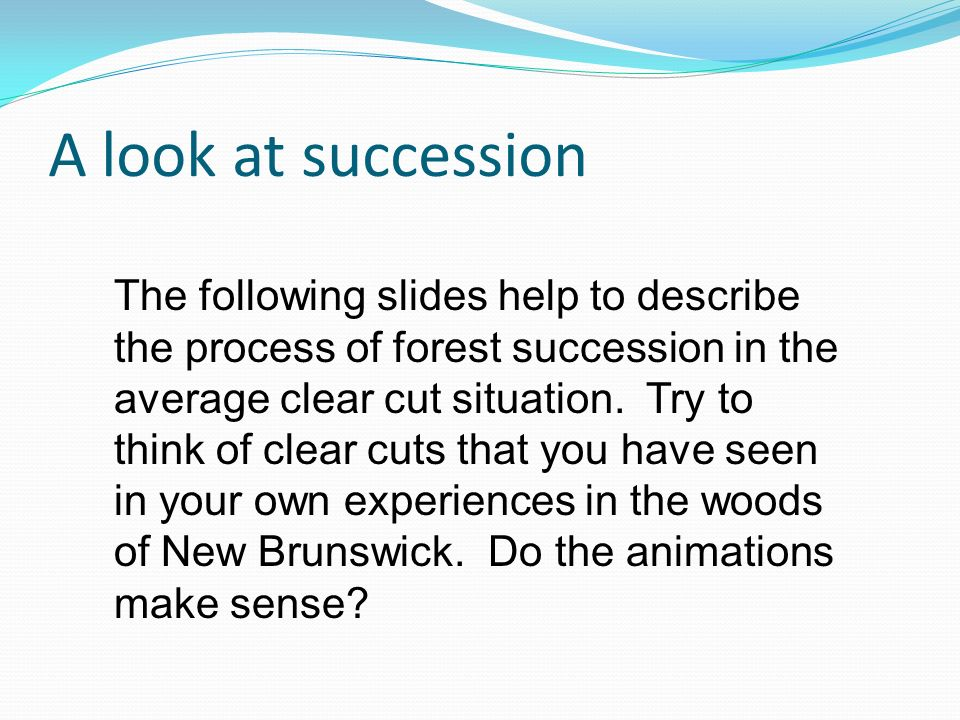 A look at succession The following slides help to describe the process of forest succession in the average clear cut situation.