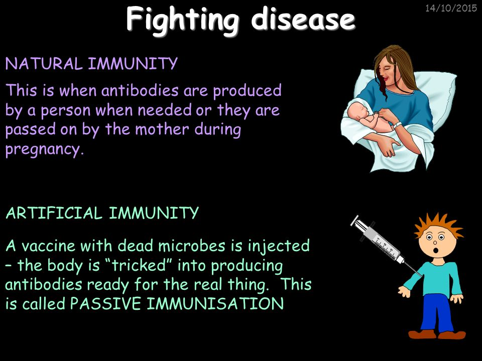14/10/2015 Fighting disease NATURAL IMMUNITY This is when antibodies are produced by a person when needed or they are passed on by the mother during pregnancy.