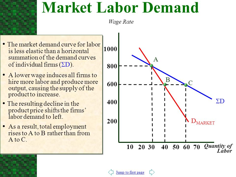 Jump to first page The market demand curve for labor is less elastic than a horizontal summation of the demand curves of individual firms (  D).