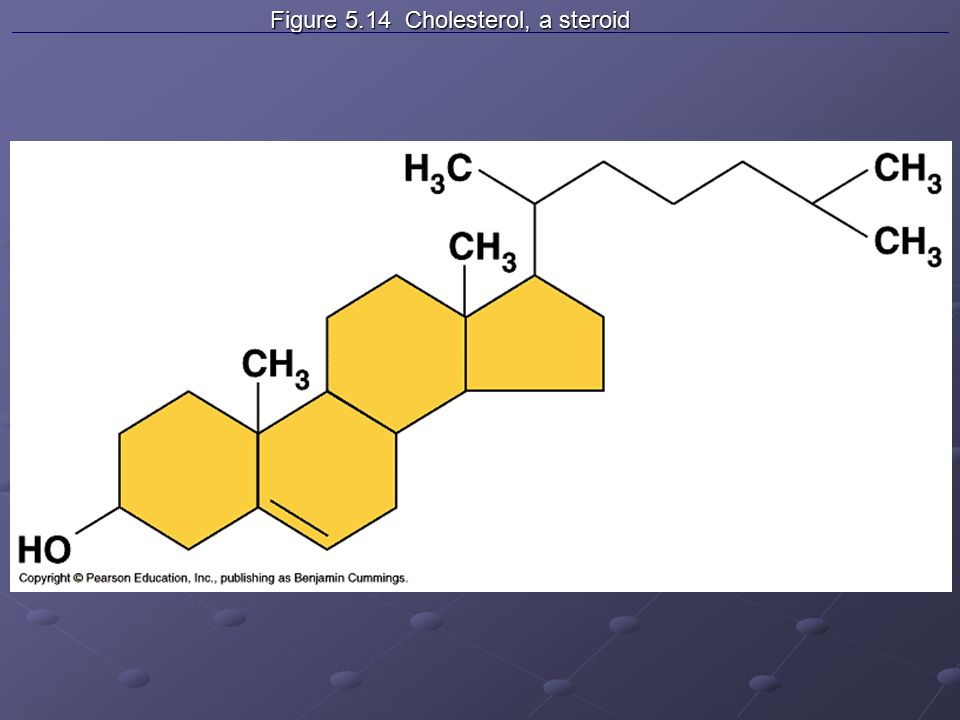 Figure 5.14 Cholesterol, a steroid Figure 5.14 Cholesterol, a steroid