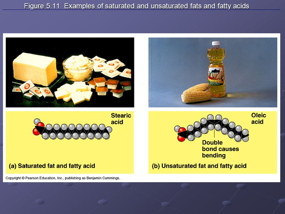 Figure 5.11 Examples of saturated and unsaturated fats and fatty acids Figure 5.11 Examples of saturated and unsaturated fats and fatty acids