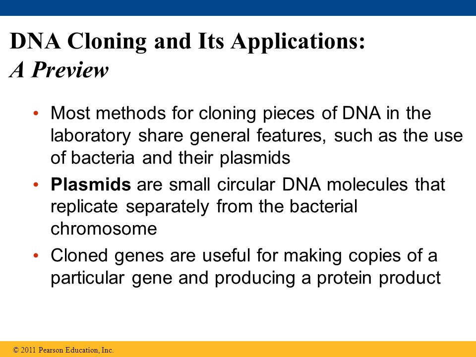 DNA Cloning and Its Applications: A Preview Most methods for cloning pieces of DNA in the laboratory share general features, such as the use of bacteria and their plasmids Plasmids are small circular DNA molecules that replicate separately from the bacterial chromosome Cloned genes are useful for making copies of a particular gene and producing a protein product © 2011 Pearson Education, Inc.