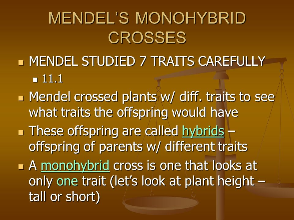 MENDEL WAS A CAREFUL RESEARCHER USED CAREFULLY CONTROLLED EXPERIMENTS USED CAREFULLY CONTROLLED EXPERIMENTS STUDIED ONE TRAIT AT A TIME STUDIED ONE TRAIT AT A TIME KEPT DETAILED DATA KEPT DETAILED DATA