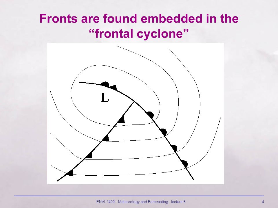 Fronts are found embedded in the frontal cyclone ENVI 1400 : Meteorology and Forecasting : lecture 84