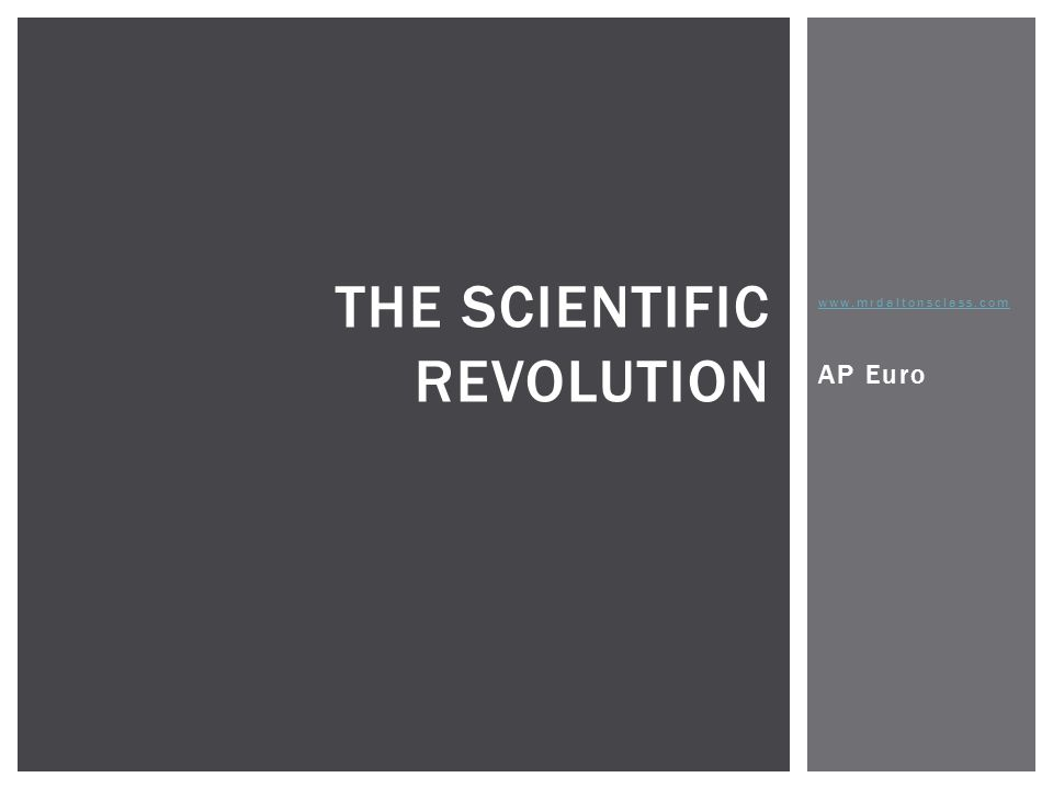 Scientific revolution essay