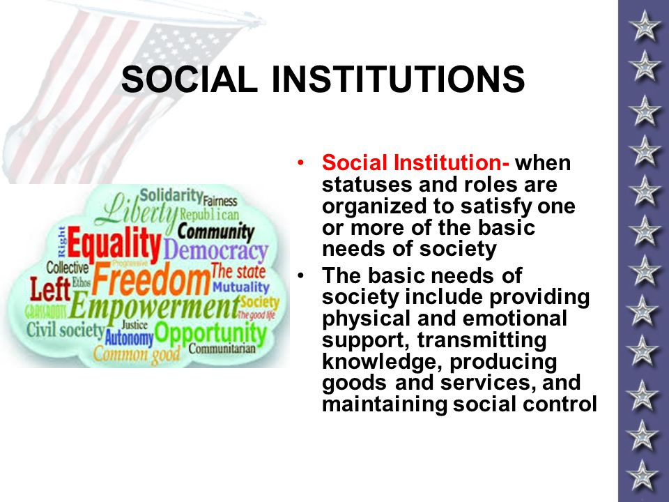 SOCIAL INSTITUTIONS Social Institution- when statuses and roles are organized to satisfy one or more of the basic needs of society The basic needs of