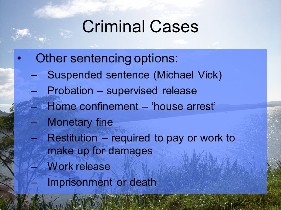 Criminal Cases Other sentencing options: –Suspended sentence (Michael Vick) –Probation – supervised release –Home confinement – 'house arrest' –Monetary fine –Restitution – required to pay or work to make up for damages –Work release –Imprisonment or death