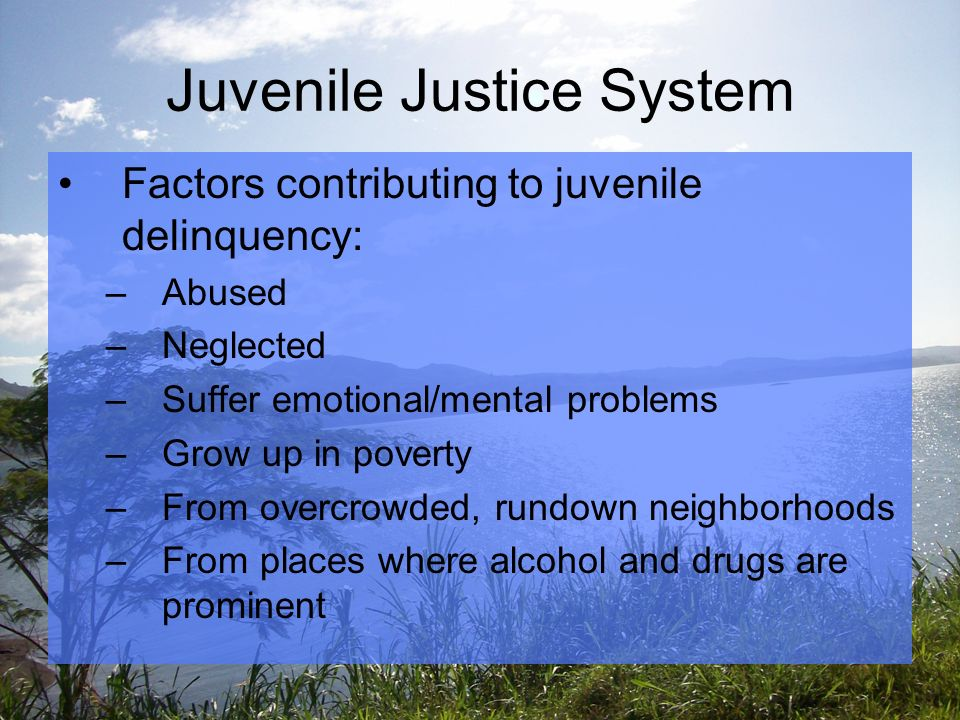 Juvenile Justice System Factors contributing to juvenile delinquency: –Abused –Neglected –Suffer emotional/mental problems –Grow up in poverty –From overcrowded, rundown neighborhoods –From places where alcohol and drugs are prominent