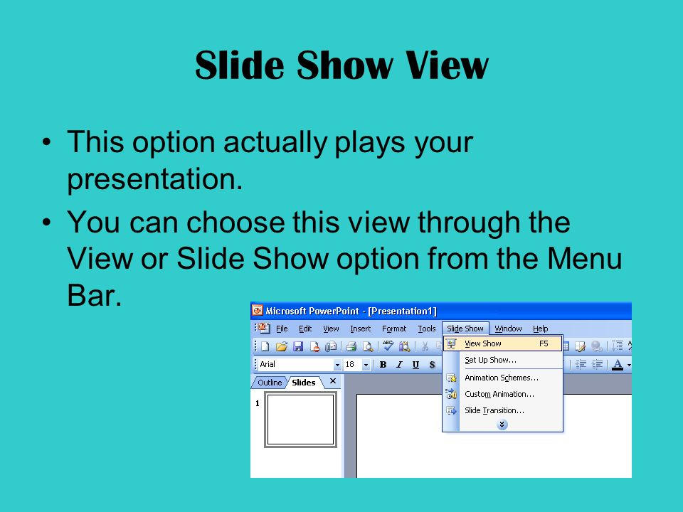 Slide Show View This option actually plays your presentation.