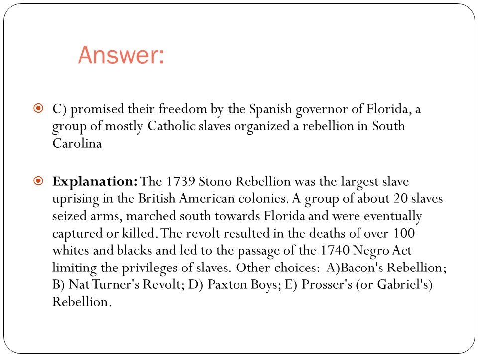 Answer:  C) promised their freedom by the Spanish governor of Florida, a group of mostly Catholic slaves organized a rebellion in South Carolina  Explanation: The 1739 Stono Rebellion was the largest slave uprising in the British American colonies.