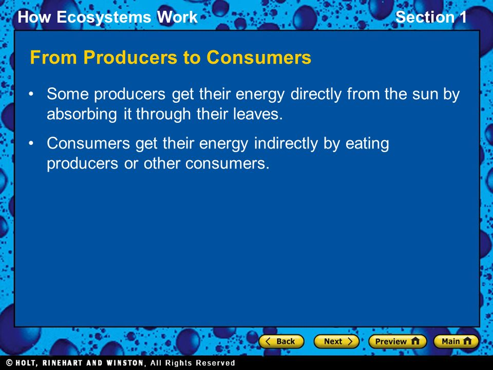 How Ecosystems WorkSection 1 From Producers to Consumers Some producers get their energy directly from the sun by absorbing it through their leaves.