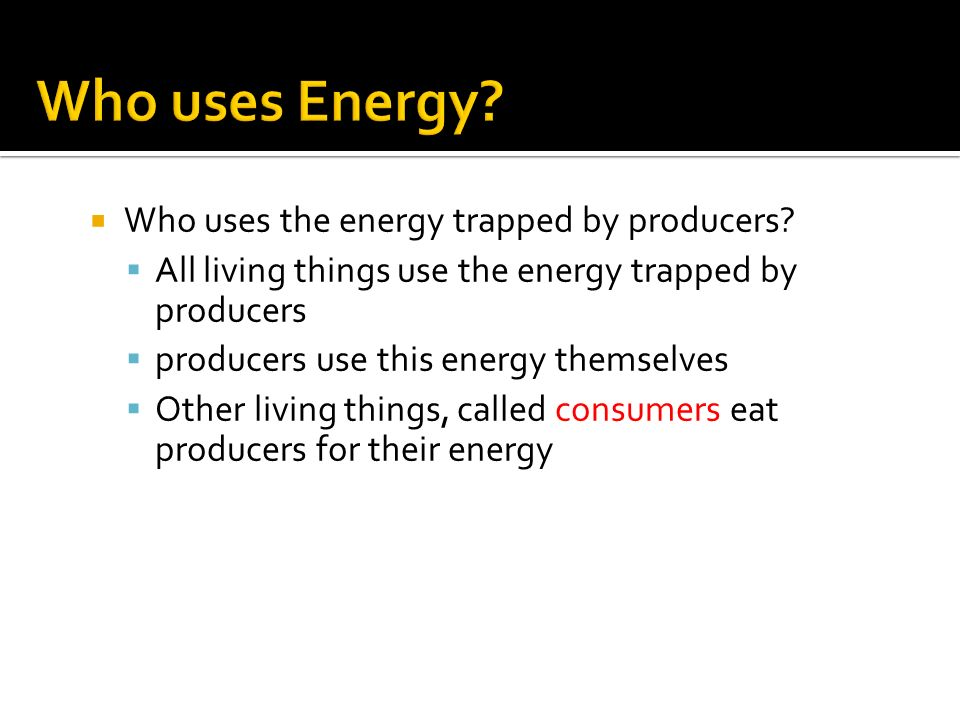  Who uses the energy trapped by producers.