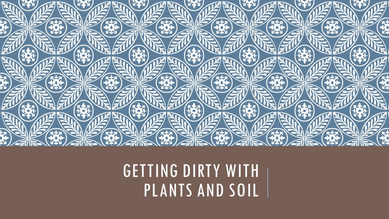 GETTING DIRTY WITH PLANTS AND SOIL