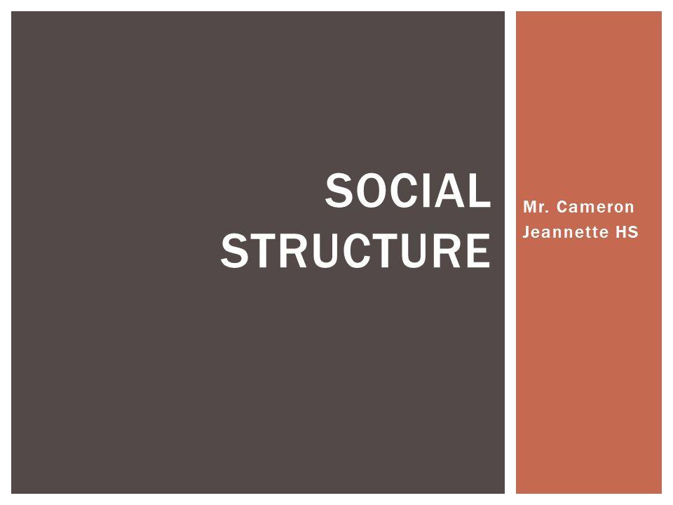 Mr. Cameron Jeannette HS SOCIAL STRUCTURE