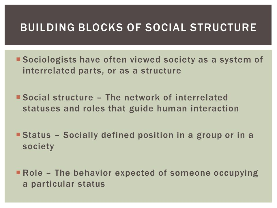  Sociologists have often viewed society as a system of interrelated parts, or as a structure  Social structure – The network of interrelated statuses and roles that guide human interaction  Status – Socially defined position in a group or in a society  Role – The behavior expected of someone occupying a particular status BUILDING BLOCKS OF SOCIAL STRUCTURE