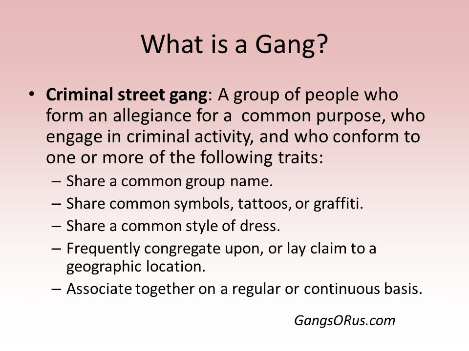 Exploring Gangs Dr Steve Broskoske Misericorida University Ppt