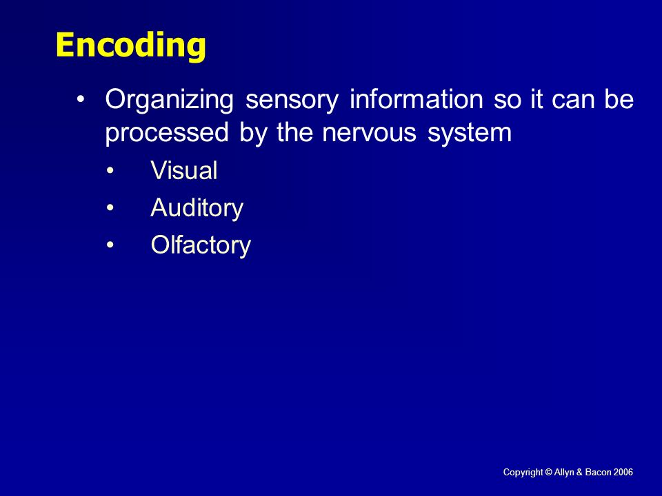 Copyright © Allyn & Bacon 2006 Encoding Organizing sensory information so it can be processed by the nervous system Visual Auditory Olfactory