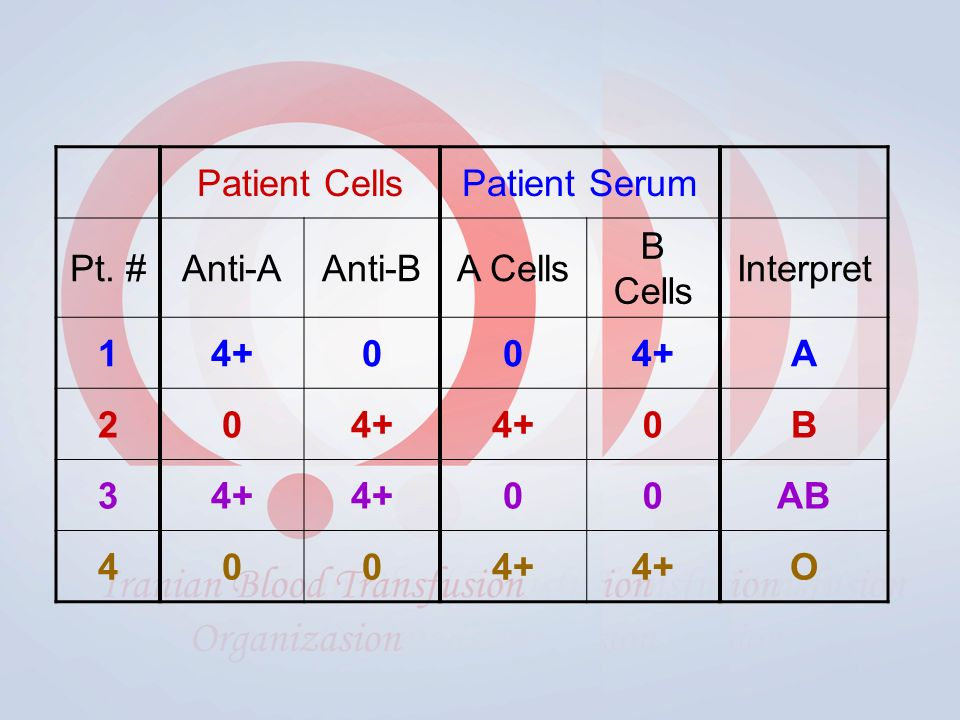 Patient CellsPatient Serum Pt. #Anti-AAnti-BA Cells B Cells Interpret A 20 0B 3 00AB O