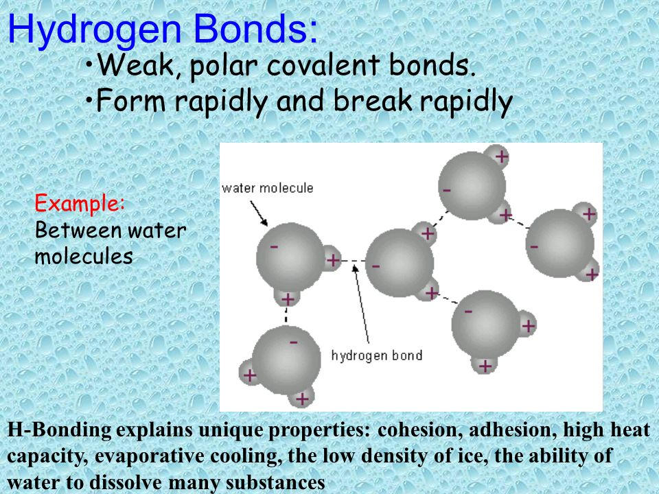 Oxygen shares its two unpaired electrons with two hydrogen atoms ...