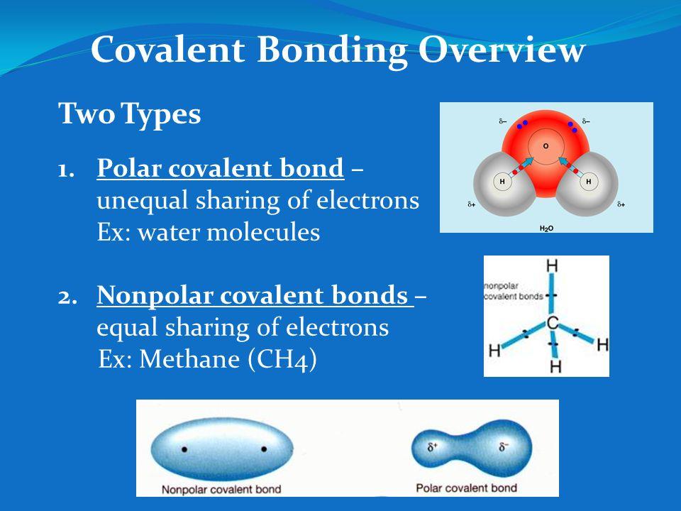 investigating covalent bonds essay