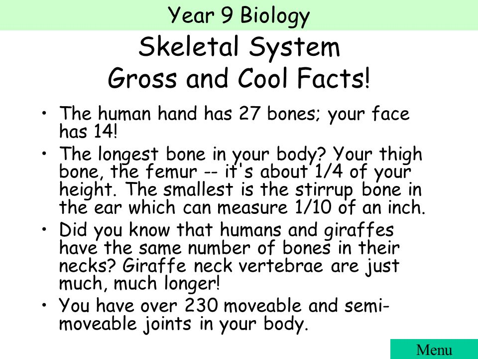 year 9 biology the human body. year 9 biology cells, tissues, Muscles