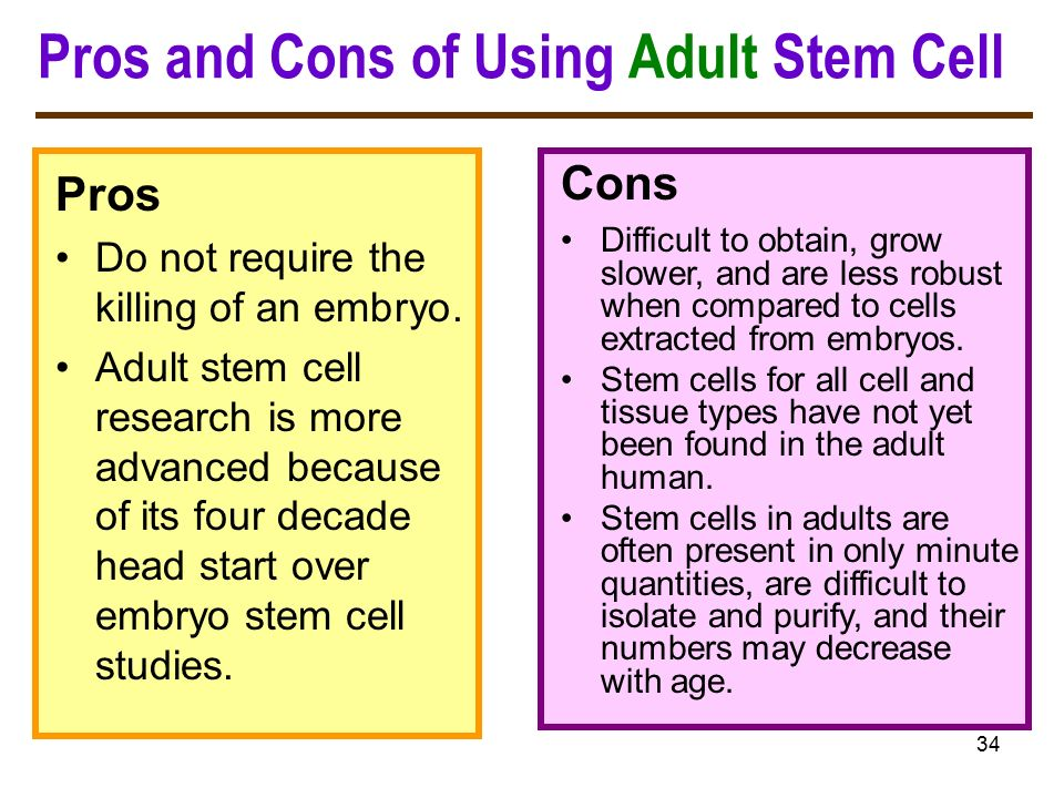 stem cell essay pros and cons The author's comments: this is a persuasive essay i had to write for school works cited experiment-resourcescom stem cell research - pros and cons scientific method - understanding science, research and experiments.