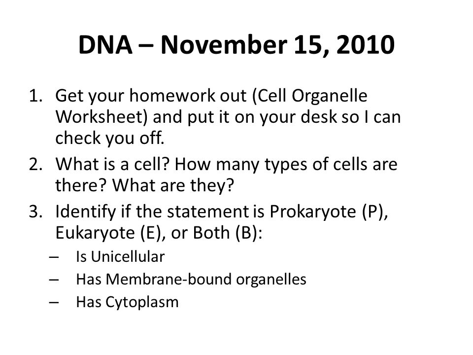 DNA November 15 Get your homework out Cell Organelle Worksheet – Cell Organelles Worksheet