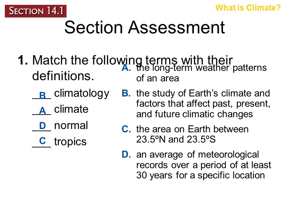Section Assessment 1.Match the following terms with their definitions.
