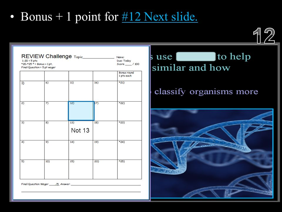 Bonus + 1 point for #12 Next slide. Copyright © 2010 Ryan P. Murphy Not 13