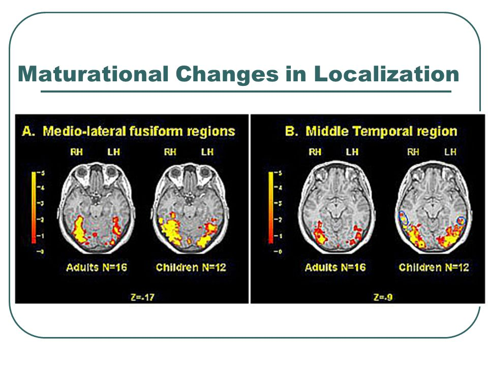 Study guide questions describe neurological maturation and the 7 maturational changes in localization malvernweather Choice Image