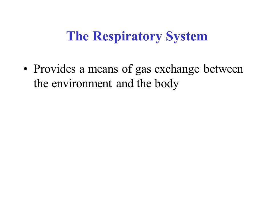 The Respiratory System Provides a means of gas exchange between the environment and the body