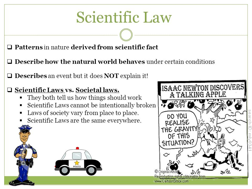 Scientific Theory Vs Law Examples 36690 Movieweb