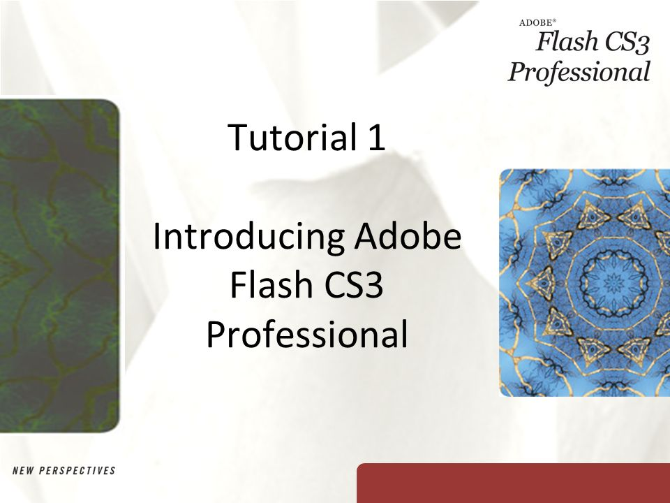 adobe flash cs3 free  for windows 10