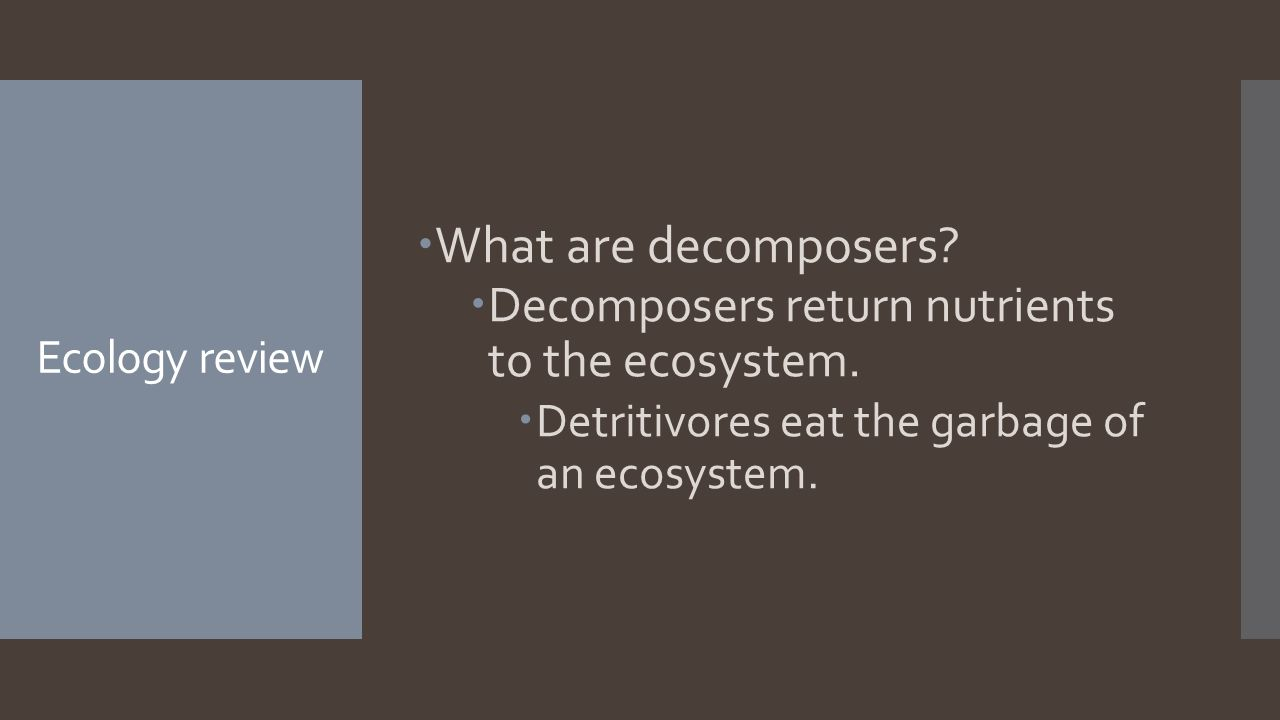 Ecology review  What are decomposers.  Decomposers return nutrients to the ecosystem.