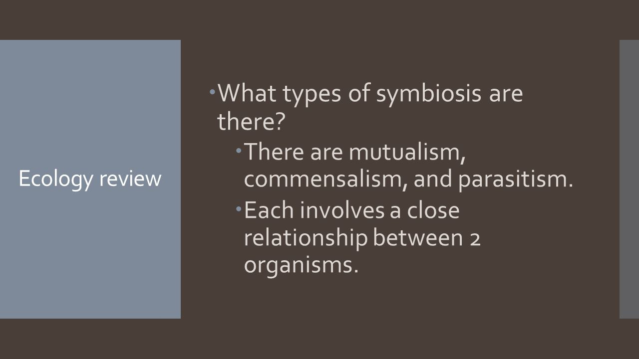Ecology review  What types of symbiosis are there.