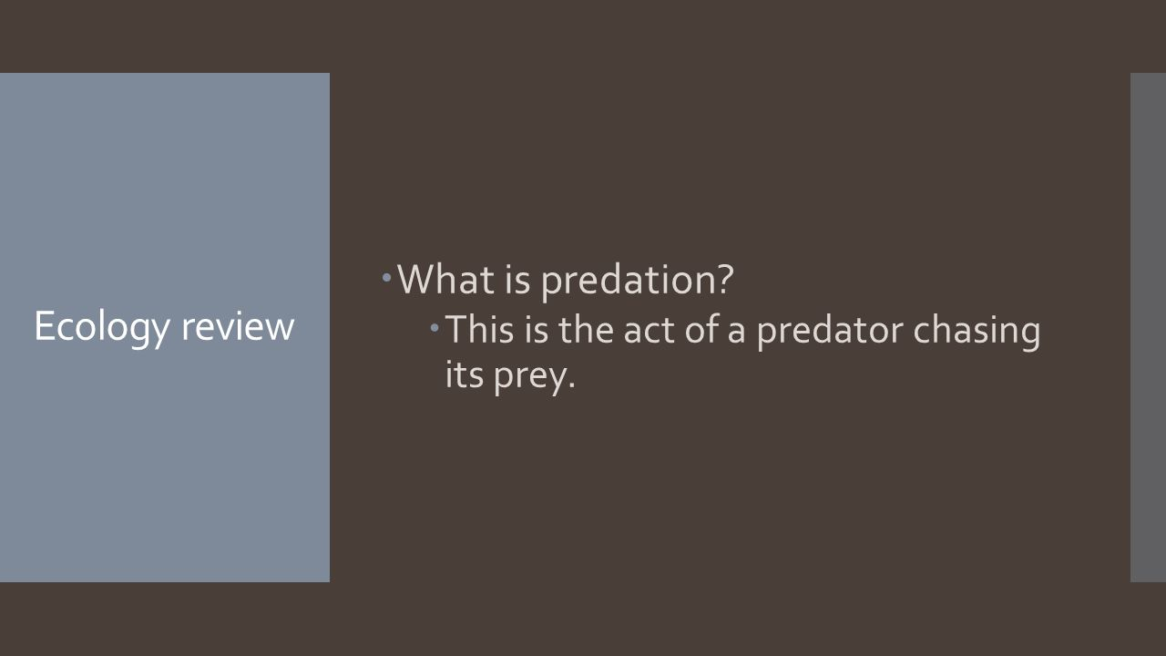 Ecology review  What is predation  This is the act of a predator chasing its prey.