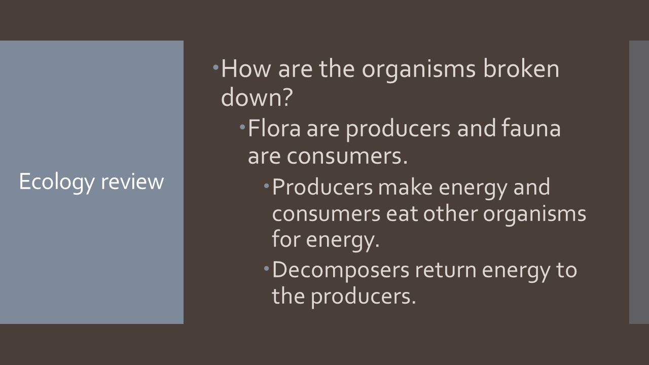 Ecology review  How are the organisms broken down.